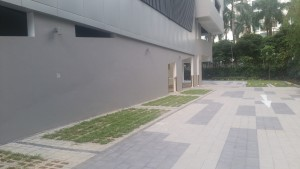 Square Pavers 4