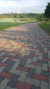Interlocking Pavers Buggy Path