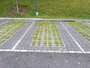 Carpark Lot Outline